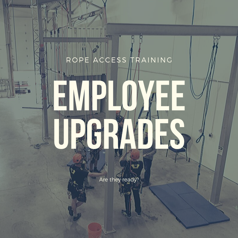 Employee Upgrades